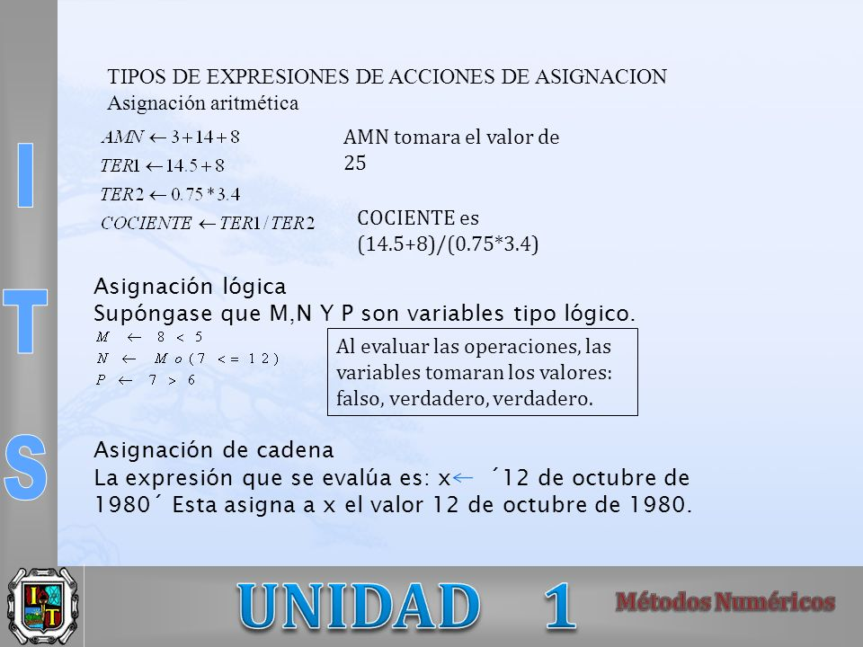 TIPOS DE EXPRESIONES DE ACCIONES DE ASIGNACION Asignación aritmética AMN tomara el valor de 25 COCIENTE es (14.5+8)/(0.75*3.4) Asignación lógica Supón