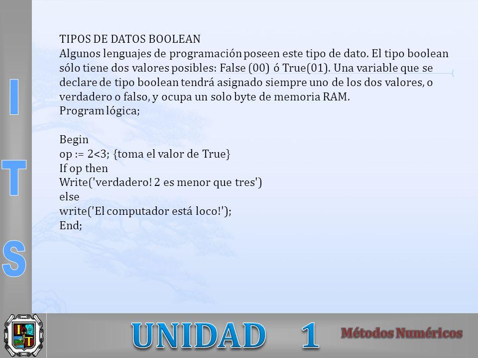 TIPOS DE DATOS BOOLEAN Algunos lenguajes de programación poseen este tipo de dato. El tipo boolean sólo tiene dos valores posibles: False (00) ó True(