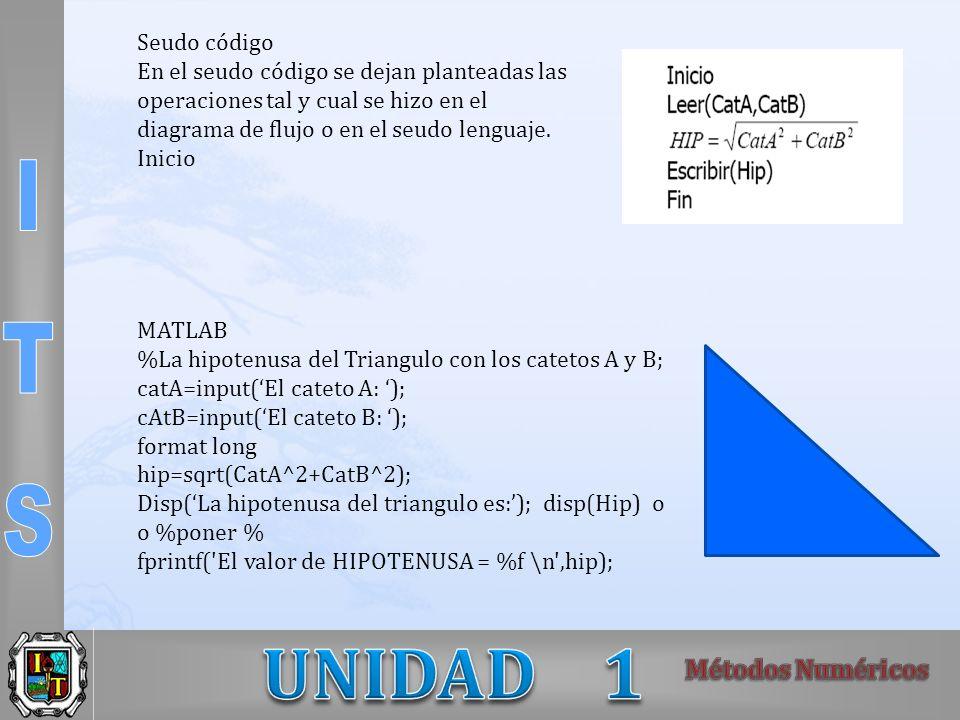Seudo código En el seudo código se dejan planteadas las operaciones tal y cual se hizo en el diagrama de flujo o en el seudo lenguaje. Inicio MATLAB %