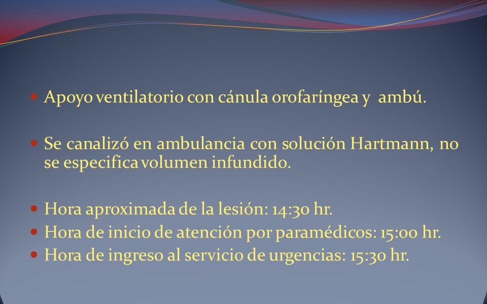 Apoyo ventilatorio con cánula orofaríngea y ambú. Se canalizó en ambulancia con solución Hartmann, no se especifica volumen infundido. Hora aproximada