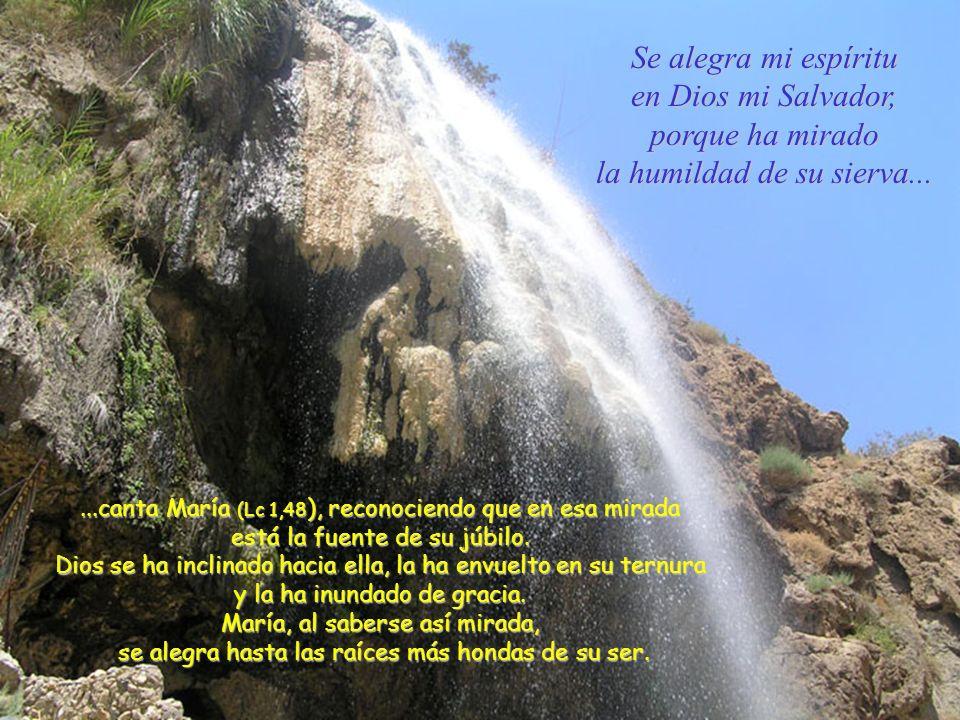 Se alegra mi espíritu en Dios mi Salvador, porque ha mirado la humildad de su sierva......canta María (Lc 1,48 ), reconociendo que en esa mirada está la fuente de su júbilo.