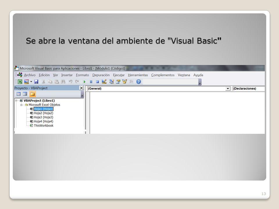 Se abre la ventana del ambiente de Visual Basic 13