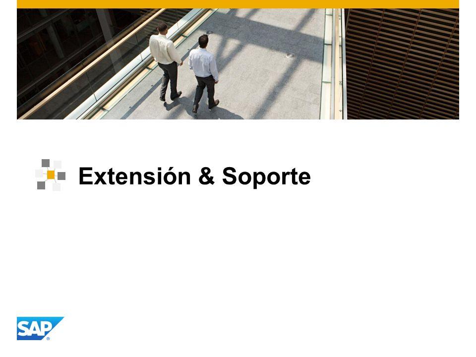 Extensión & Soporte