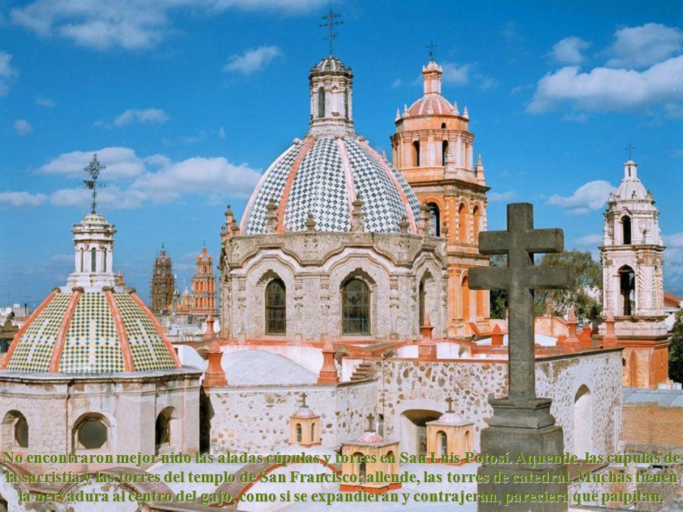 No encontraron mejor nido las aladas cúpulas y torres en San Luis Potosí.
