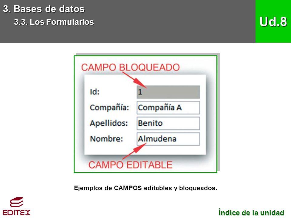 3. Bases de datos 3.3. Los Formularios Ud.8 Ejemplos de CAMPOS editables y bloqueados.