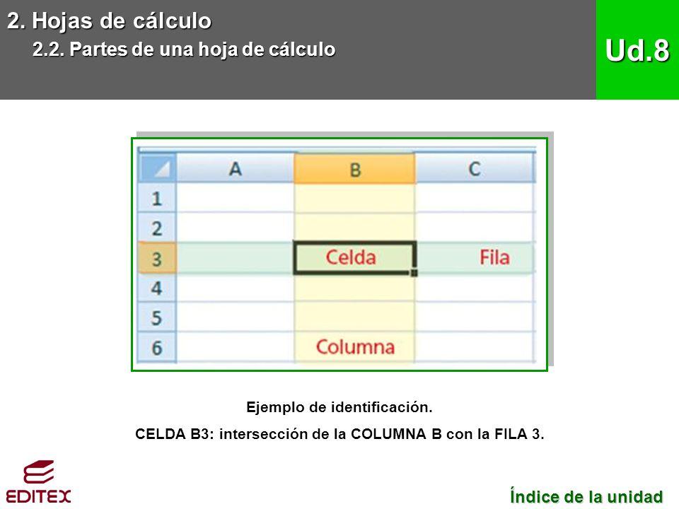 2. Hojas de cálculo 2.2. Partes de una hoja de cálculo Ud.8 Ejemplo de identificación.