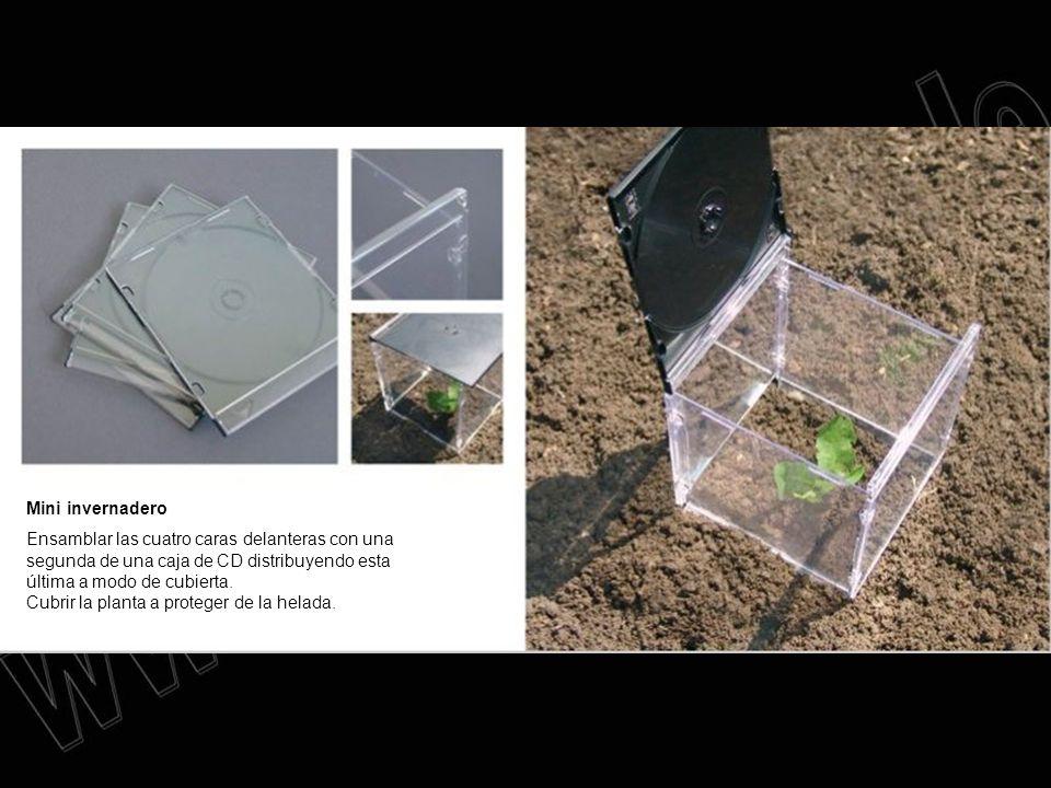 Mini invernadero Ensamblar las cuatro caras delanteras con una segunda de una caja de CD distribuyendo esta última a modo de cubierta. Cubrir la plant