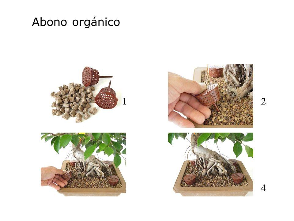 Abono orgánico 21 34