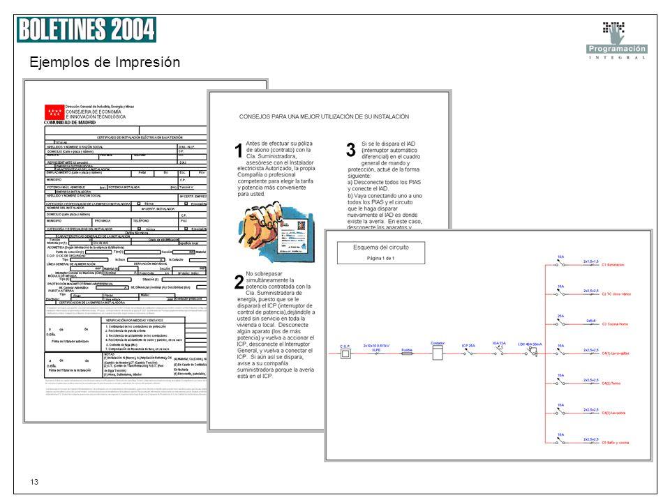 12 Impresión 2 En el momento de la impresión de un proyecto podemos seleccionar los documentos a IMPRIMIR. O el numero de copias