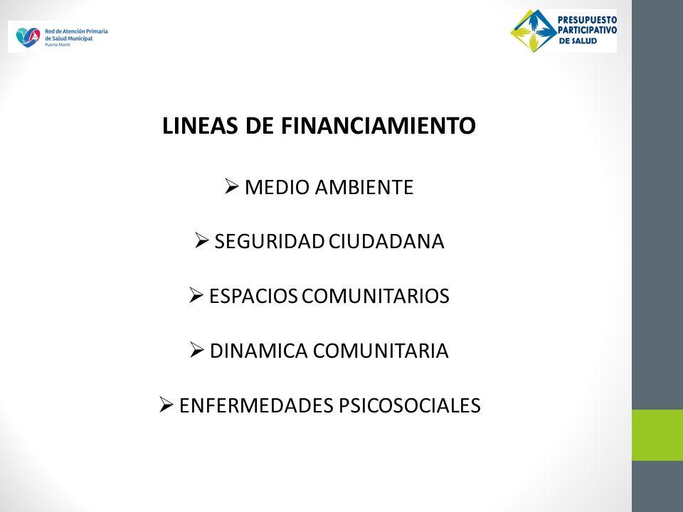 LINEAS DE FINANCIAMIENTO MEDIO AMBIENTE SEGURIDAD CIUDADANA ESPACIOS COMUNITARIOS DINAMICA COMUNITARIA ENFERMEDADES PSICOSOCIALES