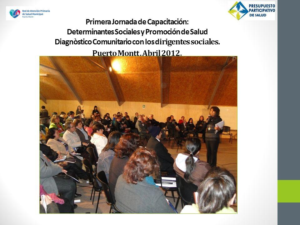 Primera Jornada de Capacitación: Determinantes Sociales y Promoción de Salud Diagnòstico Comunitario con los d irigentes sociales. Puerto Montt, Abril