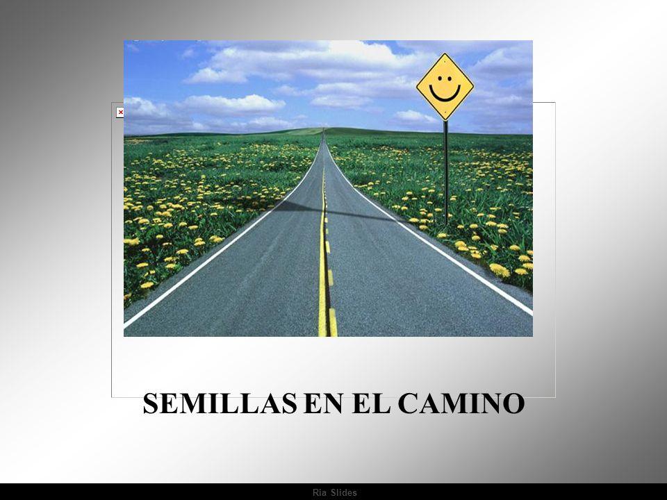 Ria Slides SEMILLAS EN EL CAMINO