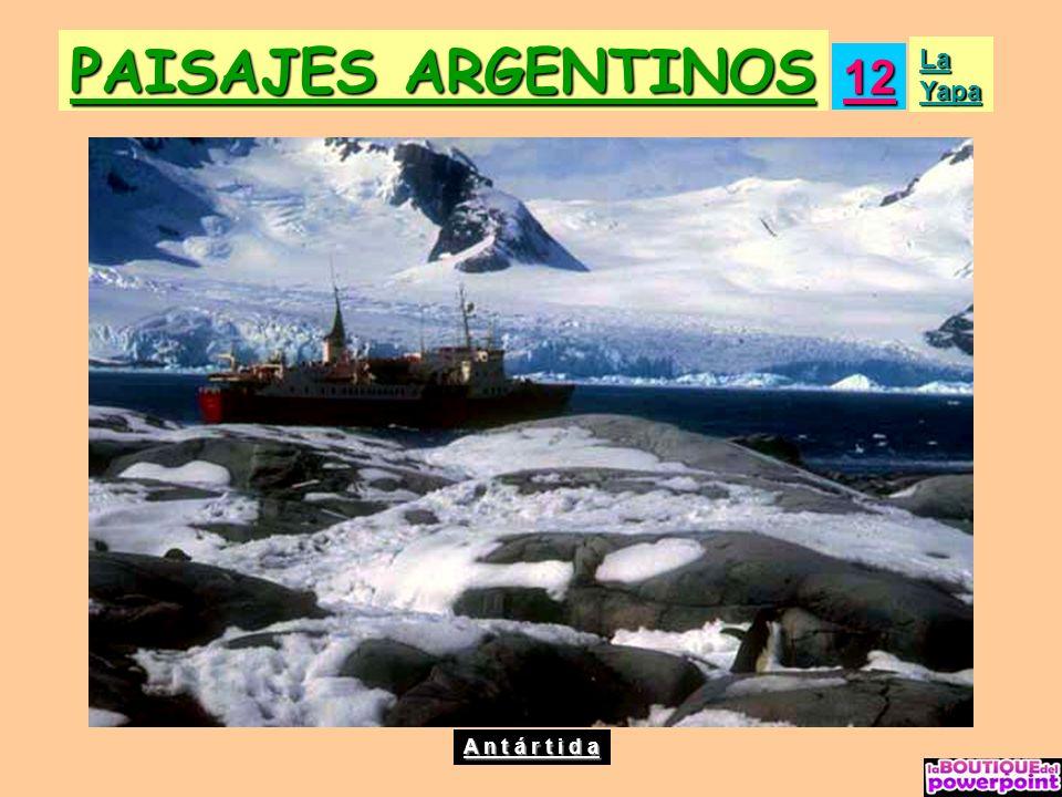 PAISAJES ARGENTINOS 12 La Yapa A n t á r t i d a