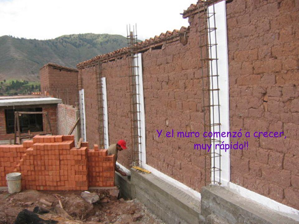 Y el muro comenzó a crecer, muy rápido!!