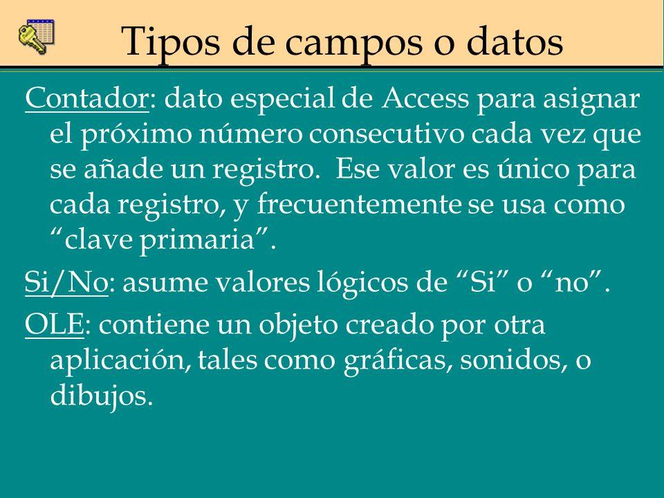 Contador: dato especial de Access para asignar el próximo número consecutivo cada vez que se añade un registro. Ese valor es único para cada registro,