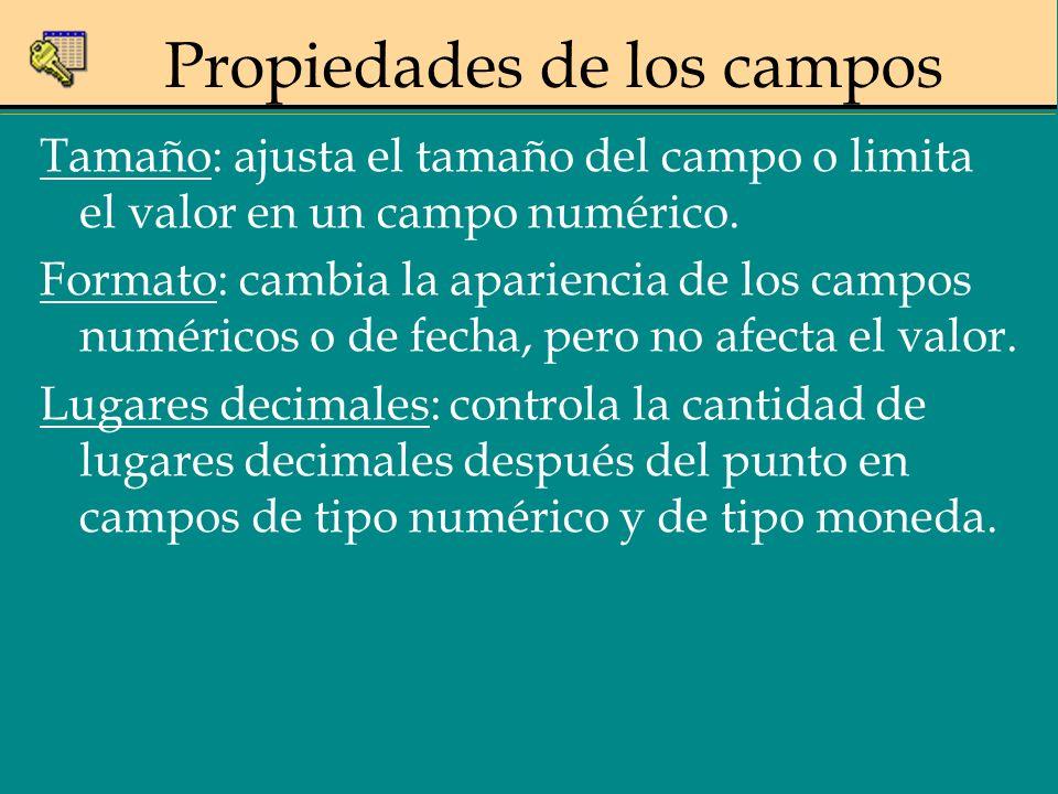 Propiedades de los campos Tamaño: ajusta el tamaño del campo o limita el valor en un campo numérico. Formato: cambia la apariencia de los campos numér
