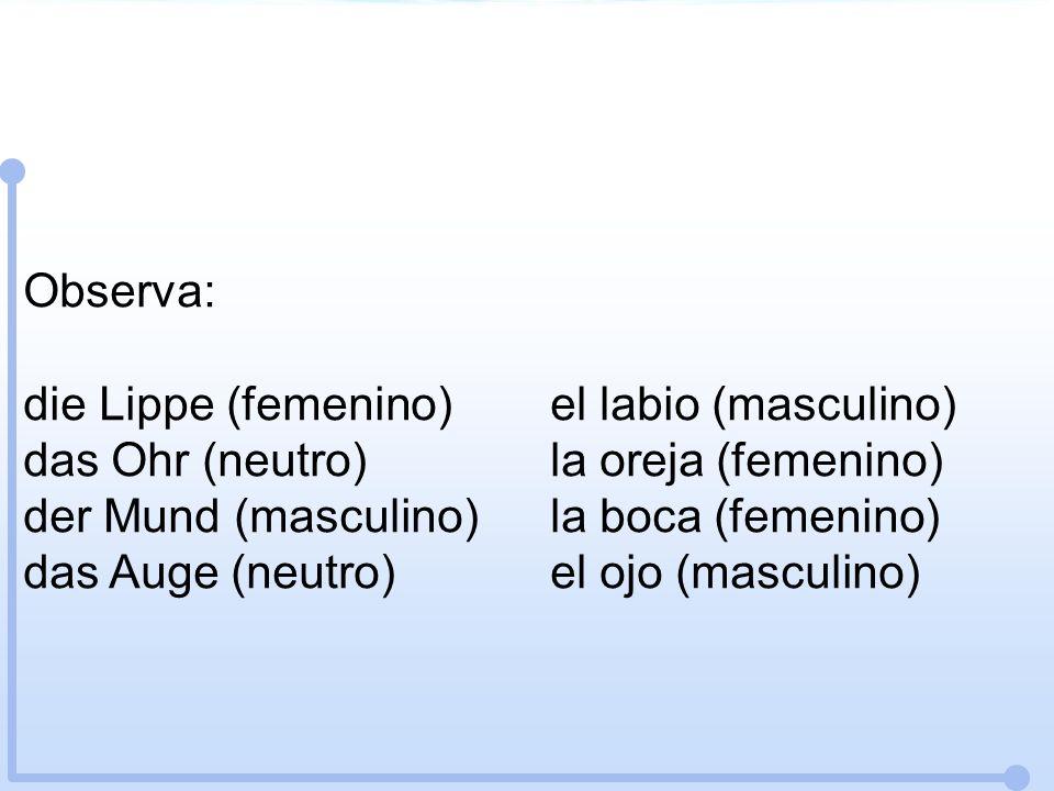 Observa: die Lippe (femenino)el labio (masculino) das Ohr (neutro)la oreja (femenino) der Mund (masculino)la boca (femenino) das Auge (neutro)el ojo (