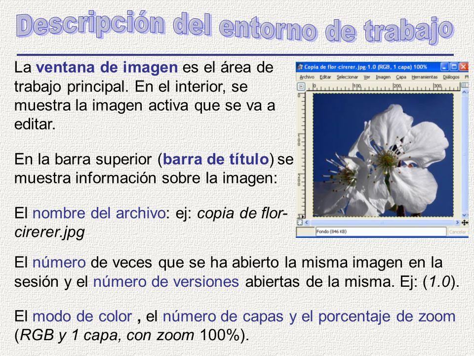 La ventana de imagen es el área de trabajo principal.