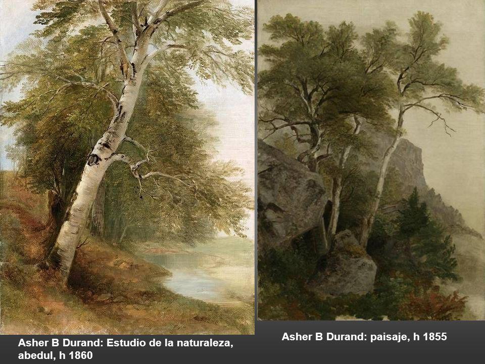 Corot: Bosque de Fontainebleau, detalle del tronco de un árbol, 1822