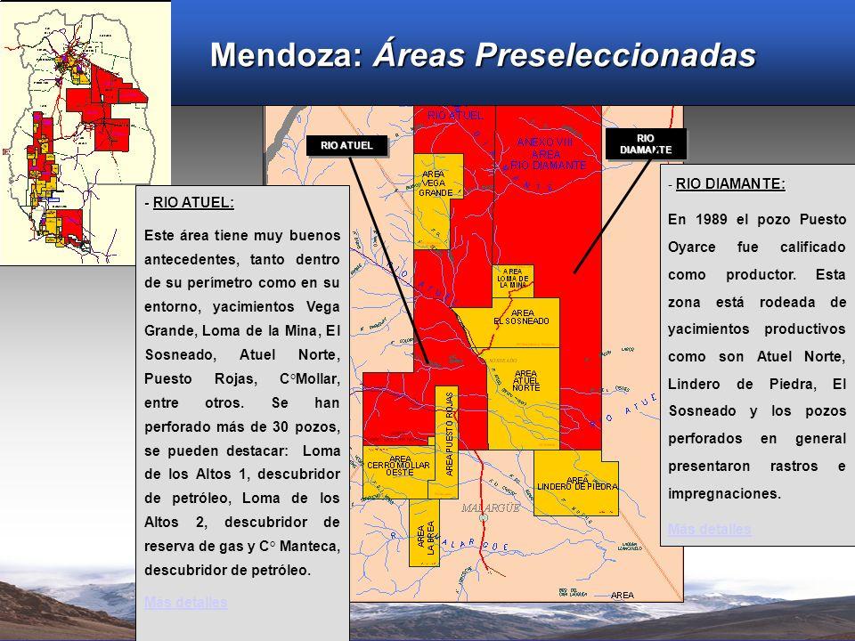 Mendoza: Áreas Preseleccionadas RIO ATUEL RIO DIAMANTE - RIO DIAMANTE: En 1989 el pozo Puesto Oyarce fue calificado como productor. Esta zona está rod