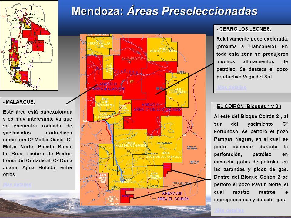 Mendoza: Áreas Preseleccionadas - CERRO LOS LEONES: Relativamente poco explorada, (próxima a Llancanelo). En toda esta zona se produjeron muchos aflor