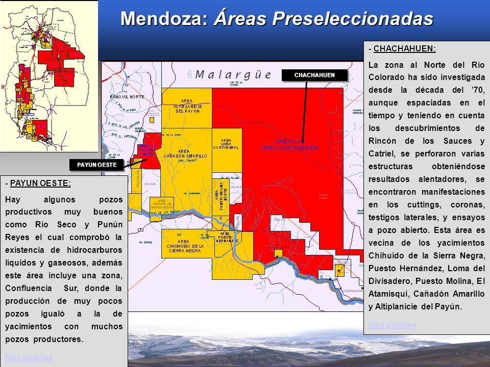Mendoza: Áreas Preseleccionadas - CHACHAHUEN: La zona al Norte del Río Colorado ha sido investigada desde la década del 70, aunque espaciadas en el ti