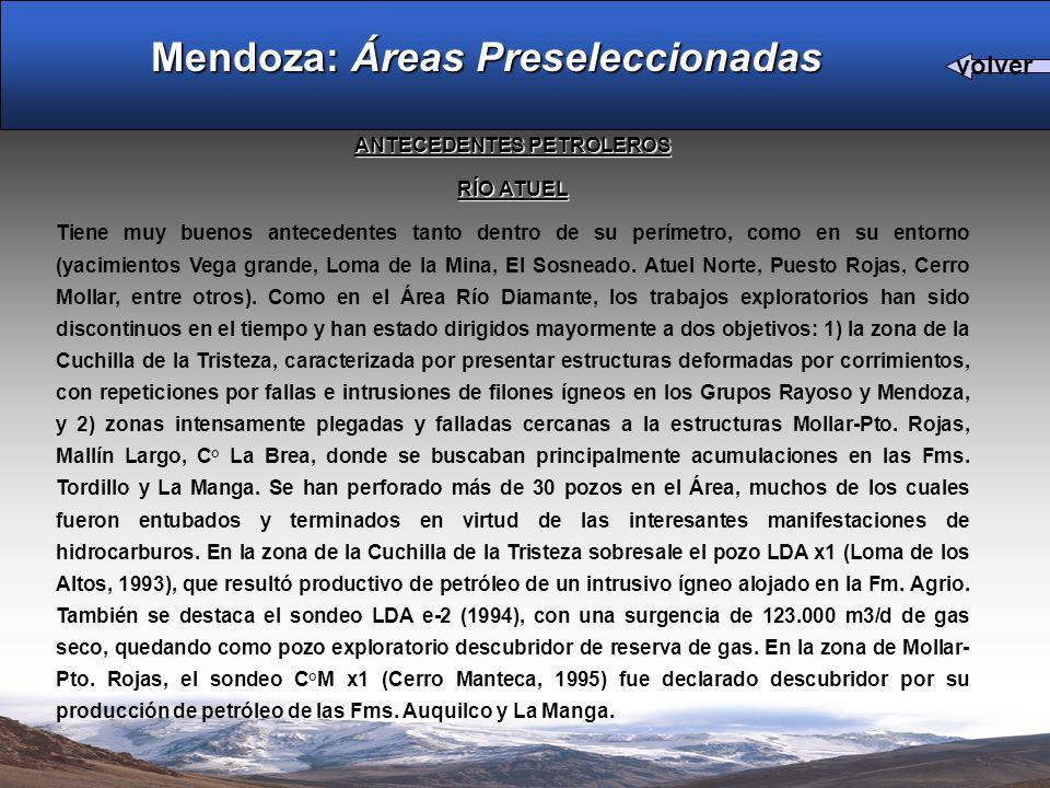 ANTECEDENTES PETROLEROS RÍO ATUEL Tiene muy buenos antecedentes tanto dentro de su perímetro, como en su entorno (yacimientos Vega grande, Loma de la Mina, El Sosneado.