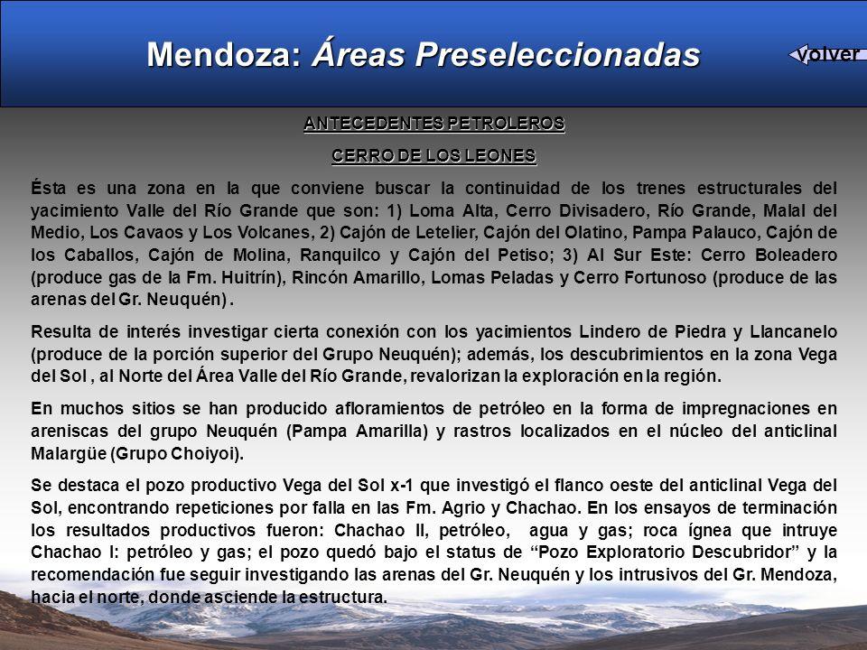 ANTECEDENTES PETROLEROS CERRO DE LOS LEONES Ésta es una zona en la que conviene buscar la continuidad de los trenes estructurales del yacimiento Valle