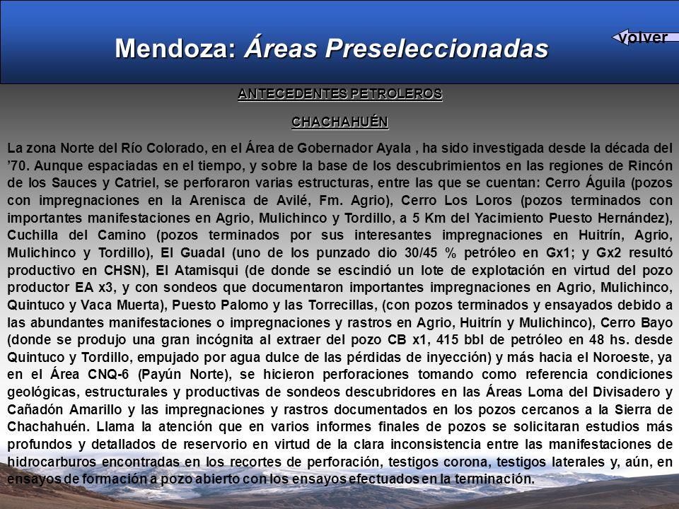 ANTECEDENTES PETROLEROS CHACHAHUÉN La zona Norte del Río Colorado, en el Área de Gobernador Ayala, ha sido investigada desde la década del 70.