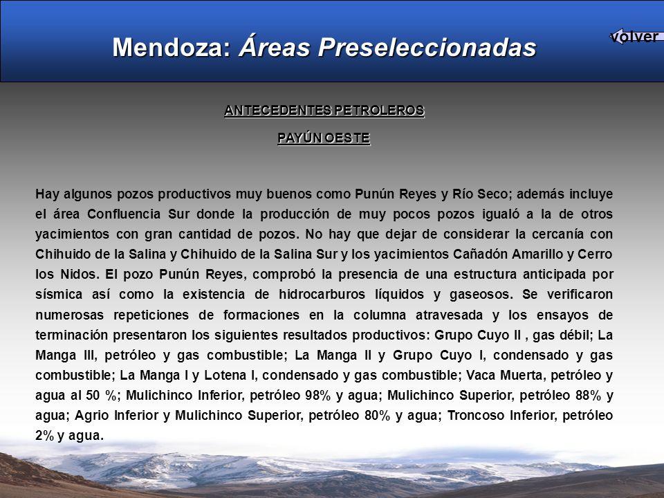 ANTECEDENTES PETROLEROS PAYÚN OESTE Hay algunos pozos productivos muy buenos como Punún Reyes y Río Seco; además incluye el área Confluencia Sur donde