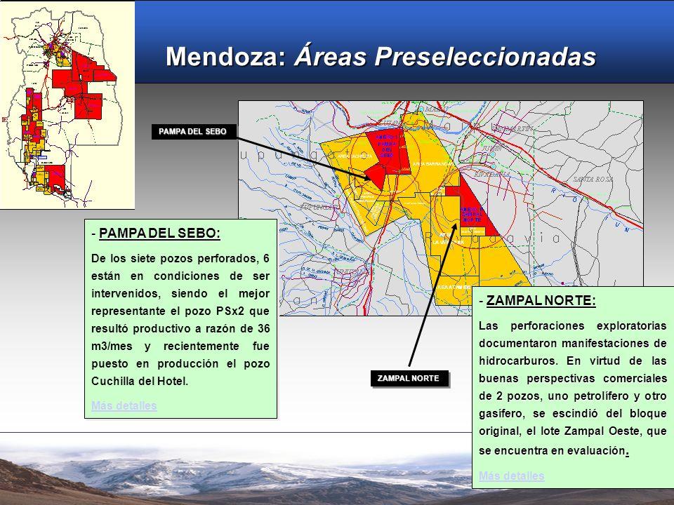 ANTECEDENTES PETROLEROS LOS TORDILLOS OESTE Los antecedentes petroleros de esta cuenca Triásica están incluidos en el perímetro definido para el presente concurso licitatorio.