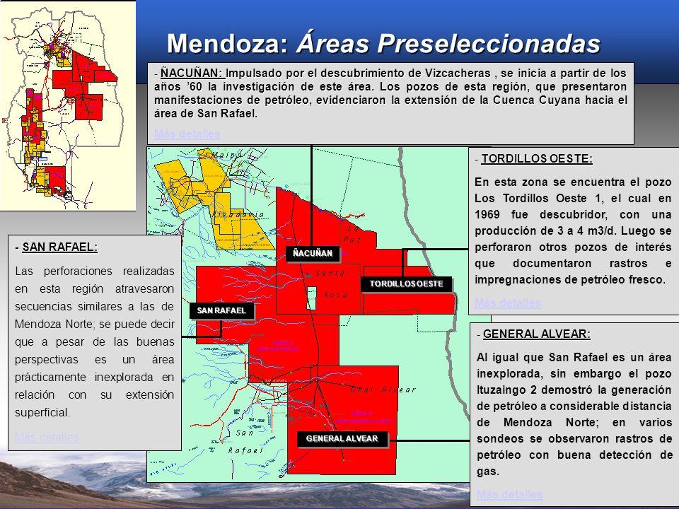ÑACUÑANÑACUÑAN SAN RAFAEL GENERAL ALVEAR TORDILLOS OESTE - SAN RAFAEL: Las perforaciones realizadas en esta región atravesaron secuencias similares a