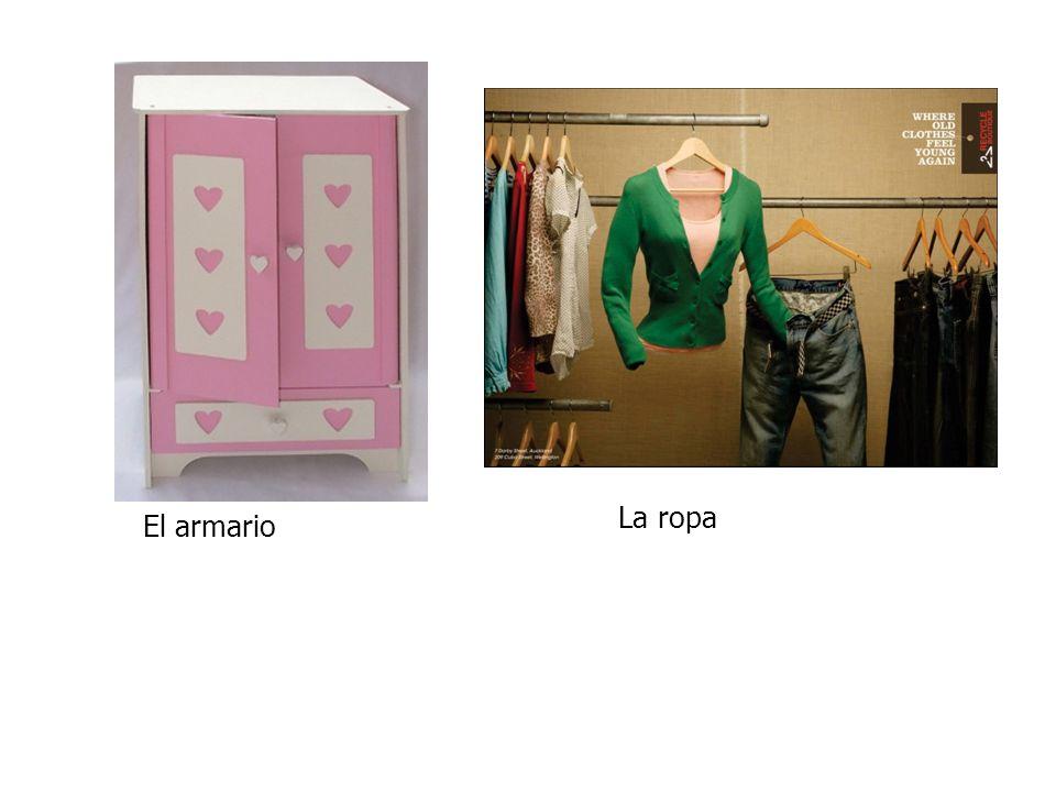 El armario La ropa