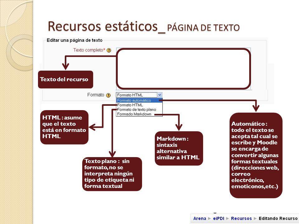 Recursos estáticos_ PÁGINA DE TEXTO ID : identifica el recurso si este forma parte de las valoraciones del alumno Ajustes relacionados con la ventana donde se mostrará el recurso.