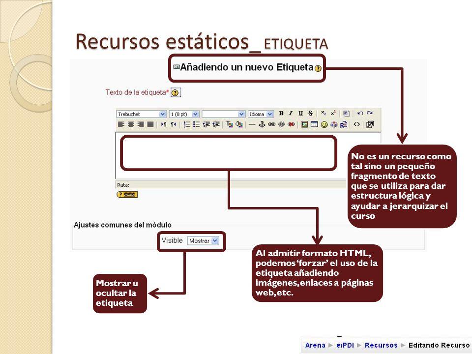 Recursos estáticos_ ETIQUETA Copiamos la URL del video localizado en Youtube en el campo URL de la etiqueta