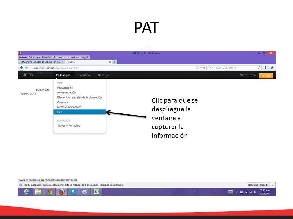 PAT Clic para que se despliegue la ventana y capturar la información