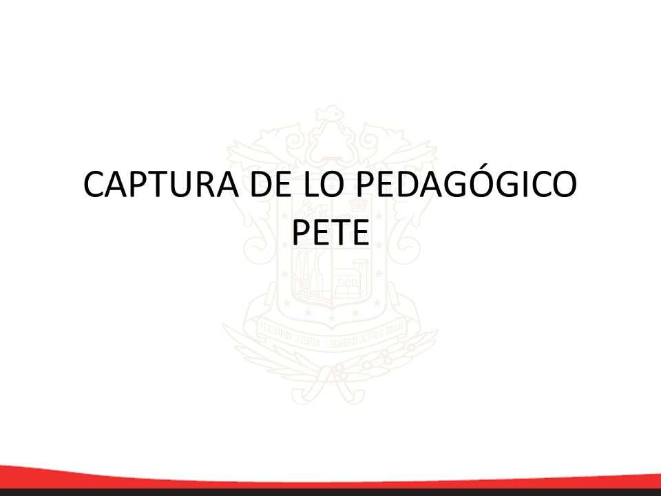 CAPTURA DE LO PEDAGÓGICO PETE