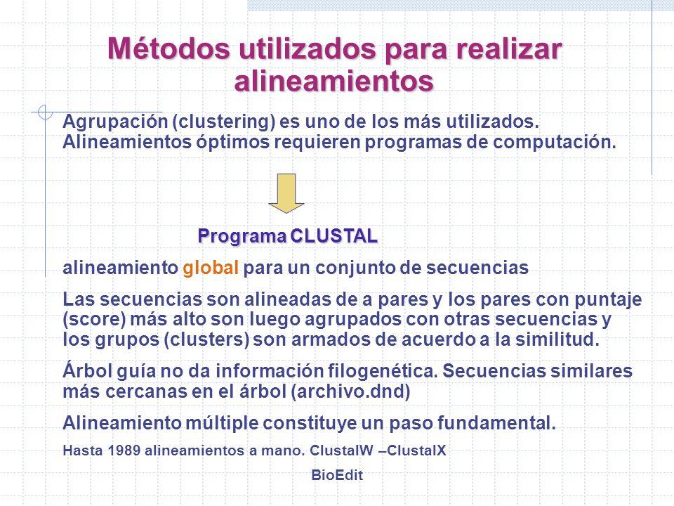 Agrupación (clustering) es uno de los más utilizados. Alineamientos óptimos requieren programas de computación. Programa CLUSTAL alineamiento global p