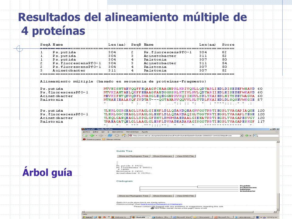 Resultados del alineamiento múltiple de 4 proteínas Árbol guía