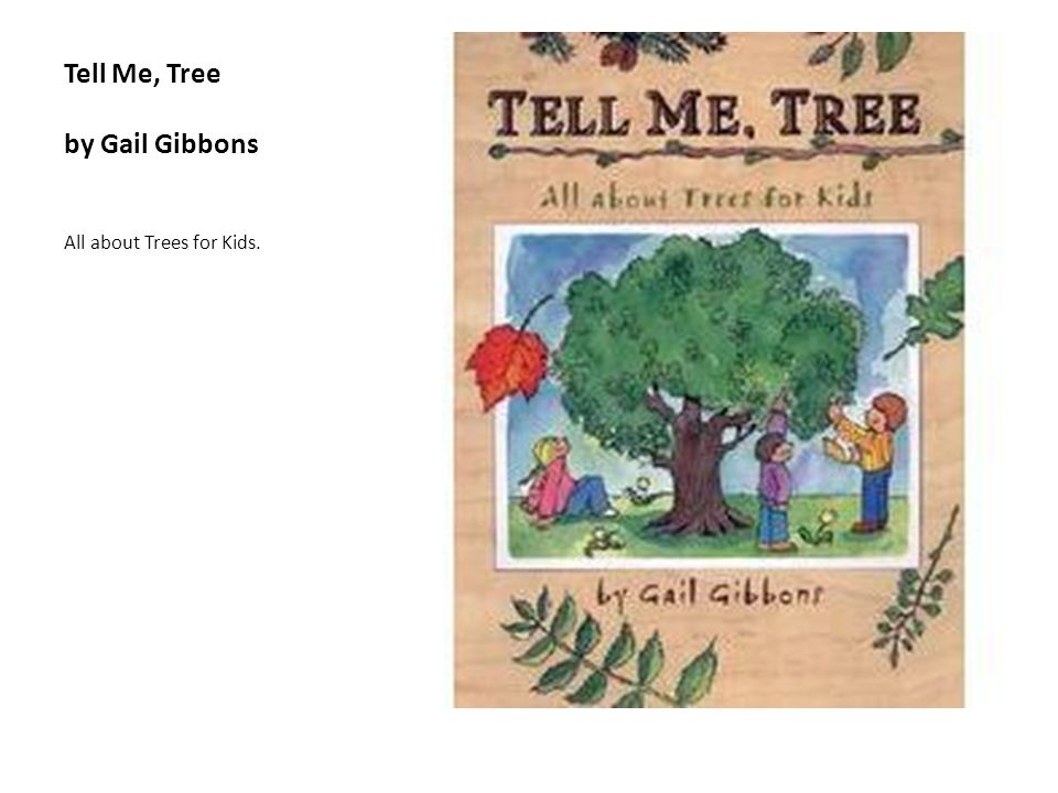 Tell Me, Tree by Gail Gibbons All about Trees for Kids.