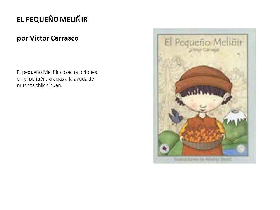 EL PEQUEÑO MELIÑIR por Víctor Carrasco El pequeño Meliñir cosecha piñones en el pehuén, gracias a la ayuda de muchos chilchihuén.