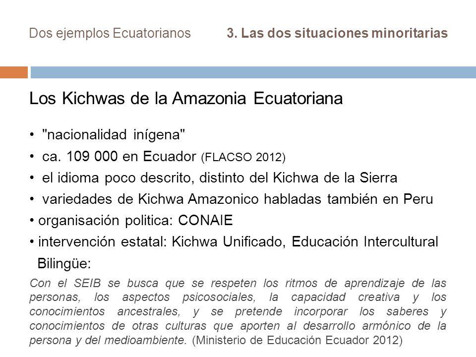 Dos ejemplos Ecuatorianos 3. Las dos situaciones minoritarias Los Kichwas de la Amazonia Ecuatoriana
