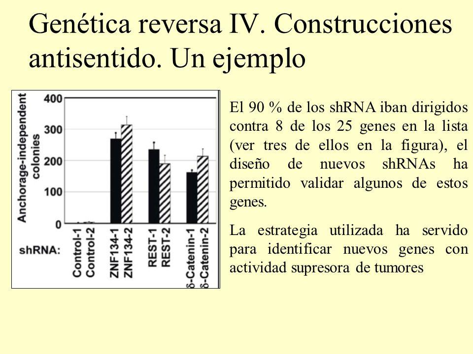 Genética reversa IV. Construcciones antisentido. Un ejemplo El 90 % de los shRNA iban dirigidos contra 8 de los 25 genes en la lista (ver tres de ello