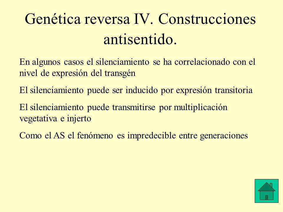 Genética reversa IV. Construcciones antisentido. En algunos casos el silenciamiento se ha correlacionado con el nivel de expresión del transgén El sil