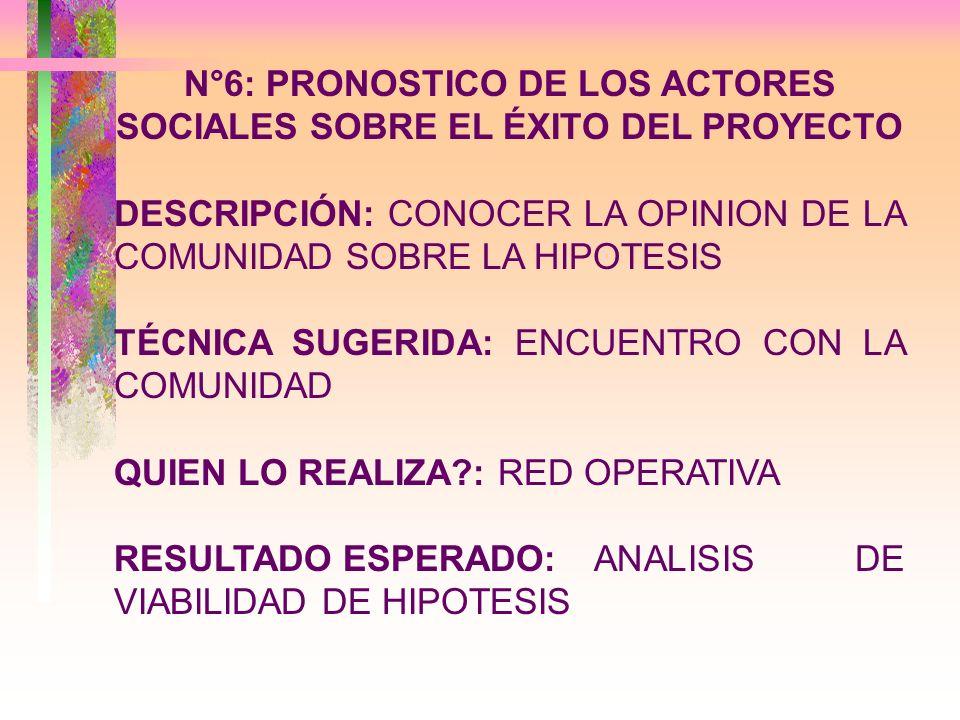 N°6: PRONOSTICO DE LOS ACTORES SOCIALES SOBRE EL ÉXITO DEL PROYECTO DESCRIPCIÓN: CONOCER LA OPINION DE LA COMUNIDAD SOBRE LA HIPOTESIS TÉCNICA SUGERID