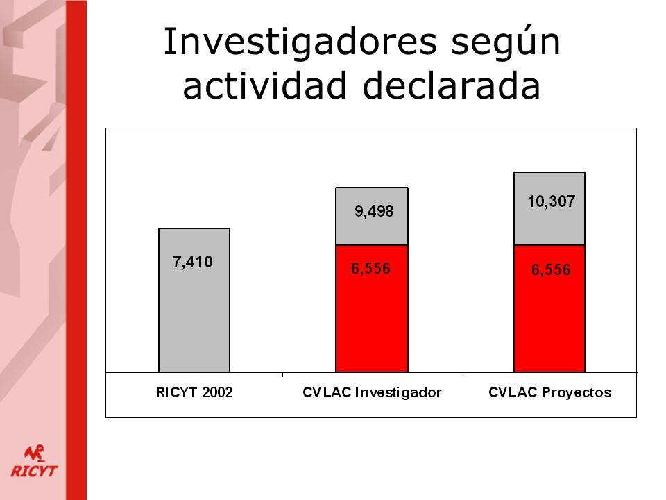 Investigadores según actividad declarada