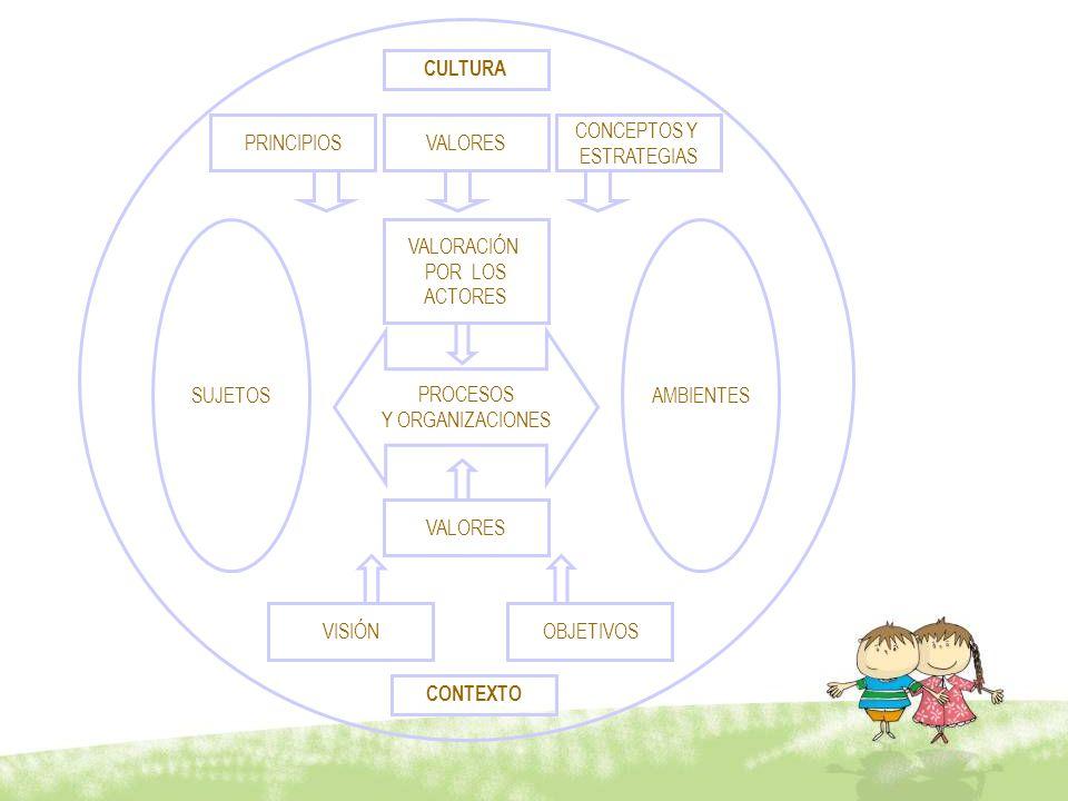 CULTURA PRINCIPIOS CONCEPTOS Y ESTRATEGIAS VALORES VALORACIÓN POR LOS ACTORES PROCESOS Y ORGANIZACIONES VALORES VISIÓN OBJETIVOS CONTEXTO AMBIENTESSUJ
