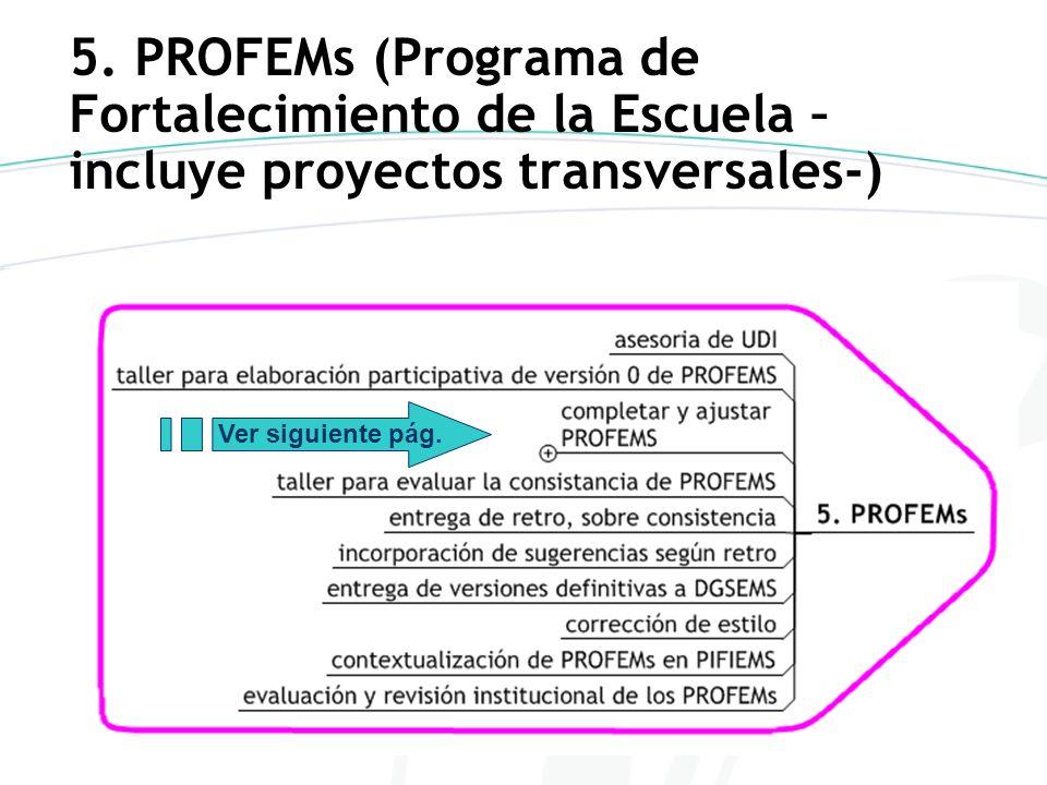 5. PROFEMs (Programa de Fortalecimiento de la Escuela – incluye proyectos transversales-) Ver siguiente pág.