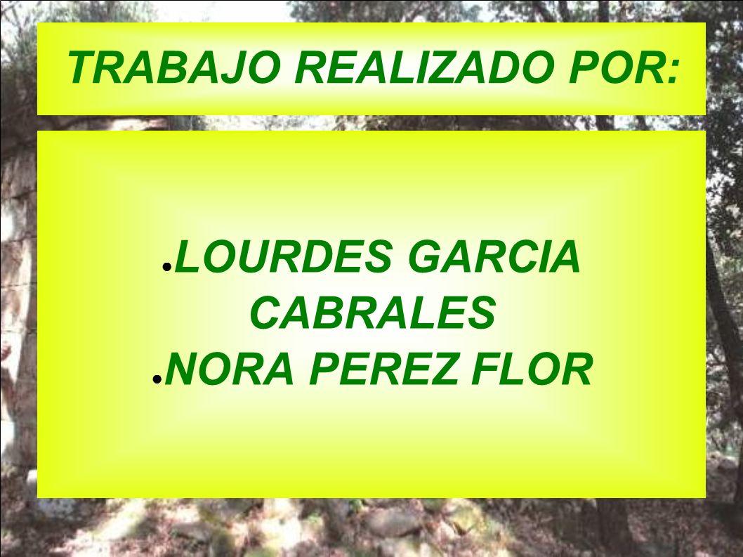 TRABAJO REALIZADO POR: LOURDES GARCIA CABRALES NORA PEREZ FLOR