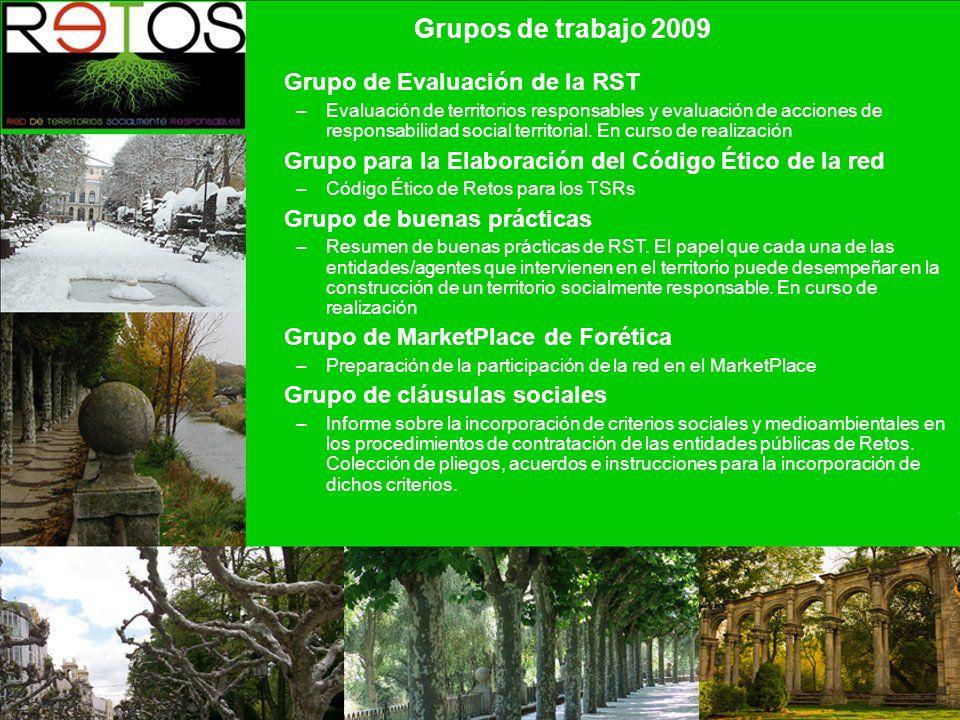 Grupos de trabajo 2009 Grupo de Evaluación de la RST –Evaluación de territorios responsables y evaluación de acciones de responsabilidad social territorial.